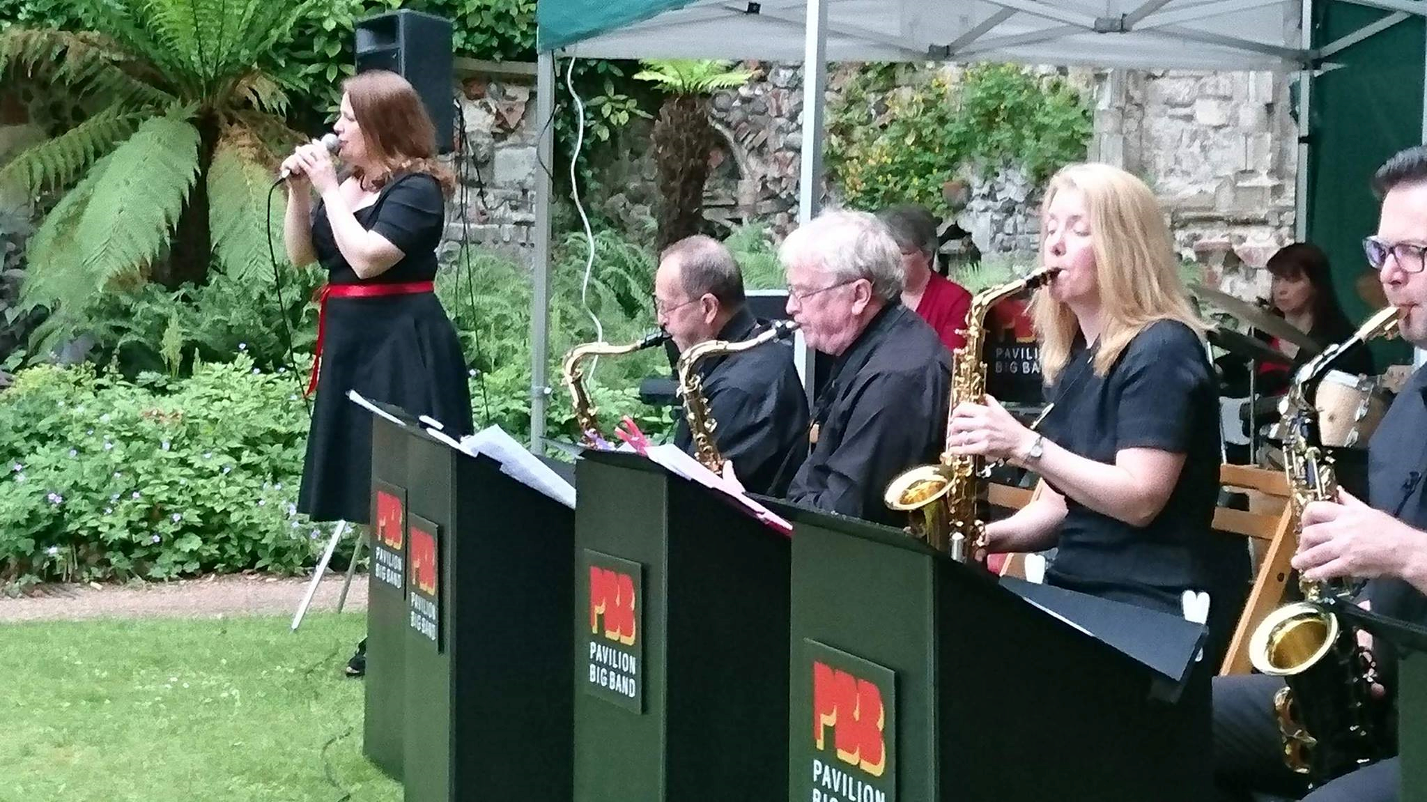 Performing at the Plantation Gardens, Norwich in 2017